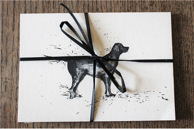 Clare Brownlow Black Labrador Postcards - Pack of 10