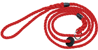 Bisley Deluxe Dog Lead - Red