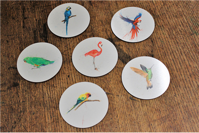 Clare Brownlow Tropical Birds Coasters - Set of 6